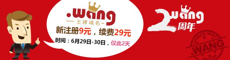 .wang专为华人定制的新顶级域名